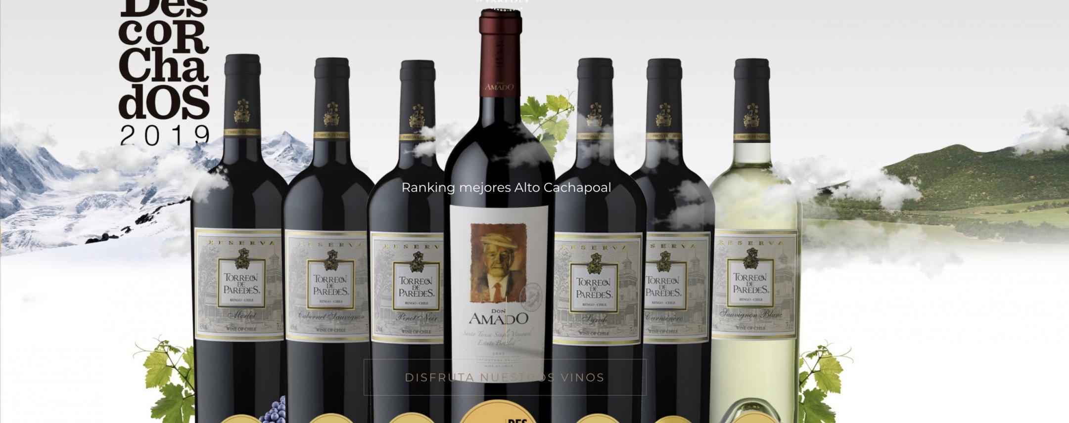 CAVA - fine wines & spirits